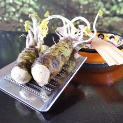 Verse wasabi rhizoom 60 gram