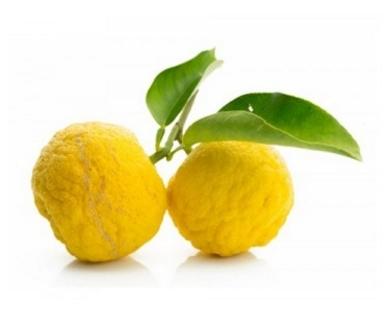 Yuzu amarillo (gele Yuzu)