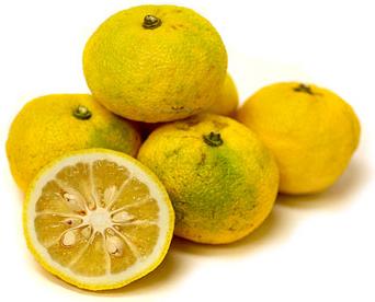 Yuzu verde amarillo (groen-gele Yuzu)