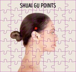 Shuai Gu punten