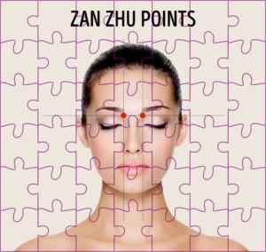 zan-zhu-point
