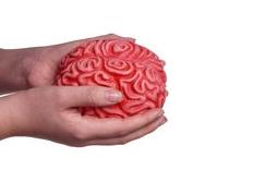liefde en hersenen