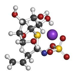 Wasabi chemie - De unieke smaak van Wasabi komt voort uit isothiocyanaten (ITC), die vrijkomen door hydrolyse van glucosinolaten (sinigrin molecuul) in combinatie met het enzym myrosinase wanneer het weefsel van de plant wordt verstoord