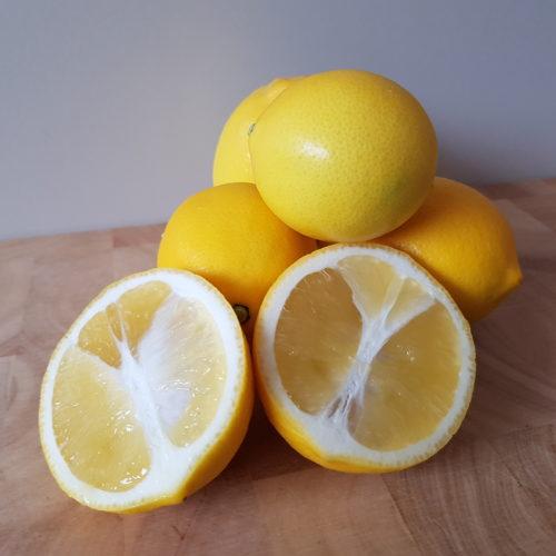 Meyer citroen