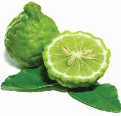 Bergamot citroen Sir.Green