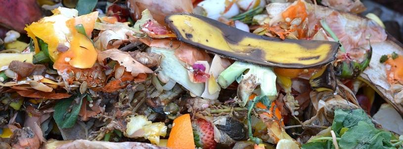 Bananenschil op de composthoop