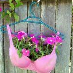 bh gebruiken als decoratieve planten bak