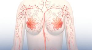 borsten en lymfesysteem