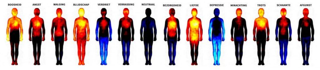 waar voel je welke emotie in je lijf