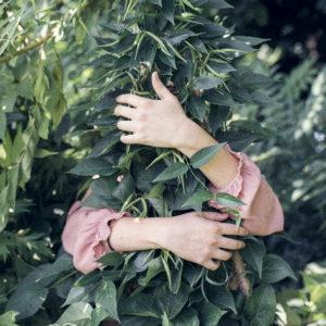 planten knuffelen