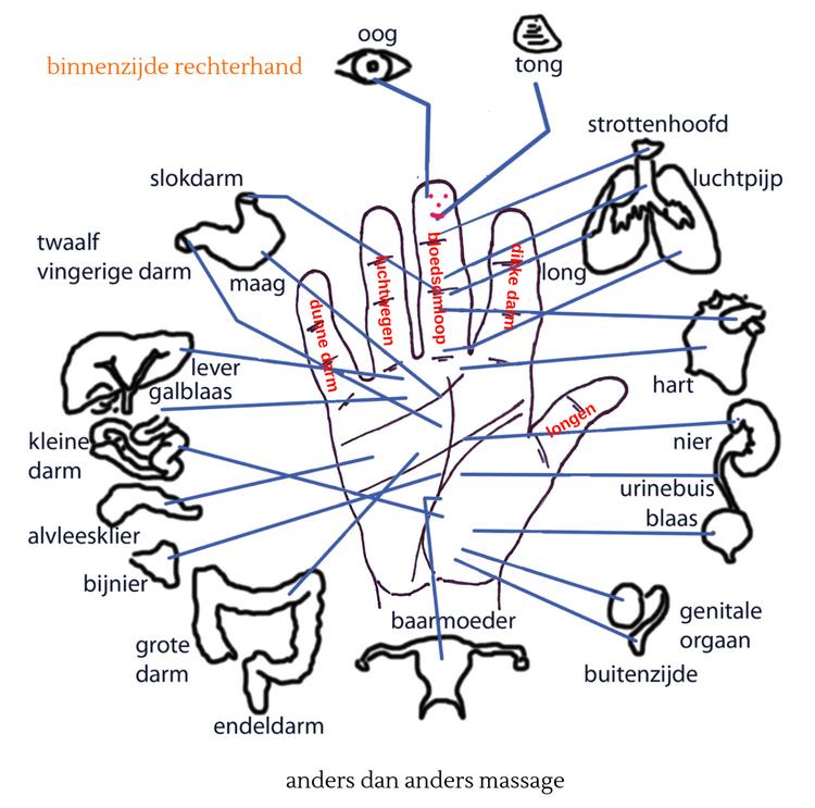 vingerpressuur binnenzijde rechterhand