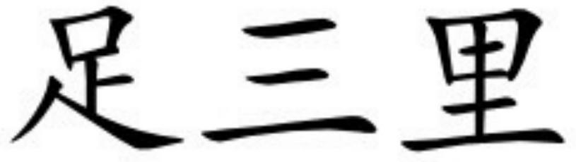 Zú Sān Lĭ (ST36)