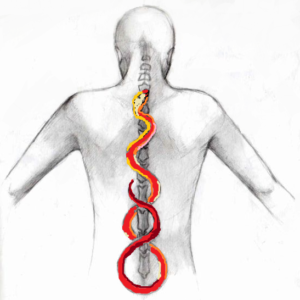 the rising snake of Kundalini