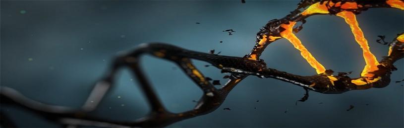 De frequenties in elektrosmog hebben allereerst een biologisch effect: zij breken het DNA