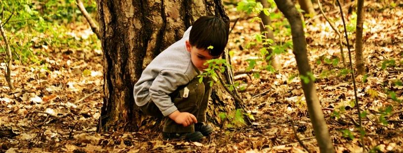 kinderen die spelen in het bos of natuur hoeven minder te 'de-switchen'