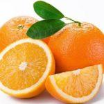Citrus vrucht - Navelina