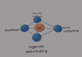 Wat is Qi?