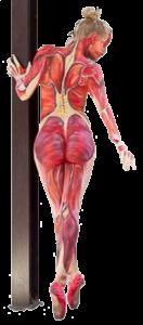 body painted vrouwelijk lichaam, anatomie van de spieren