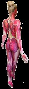 bodypaint anatomie op vrouwelijk lichaam