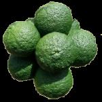 citrus vrucht Yuzu verde