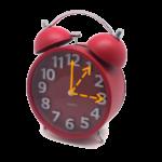 Lever (Zang) tijd volgens orgaanklok