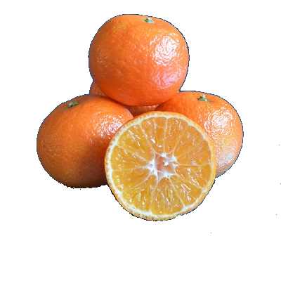 Mandarijn 'Clementine Clemenrubi'