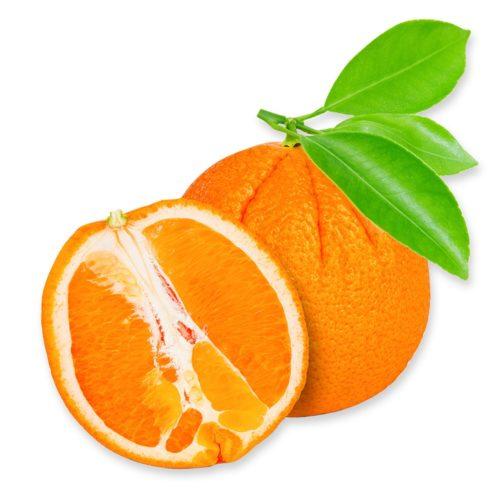 Zoete sinaasappel 'Fukumoto', Sir.Green