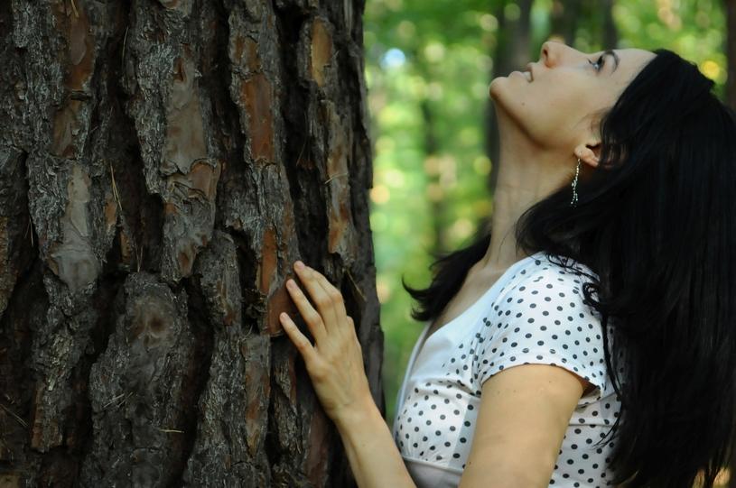 maak contact met deze krachtige bomen