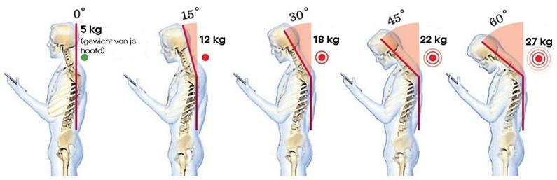 hoeveel weegt een menselijk hoofd