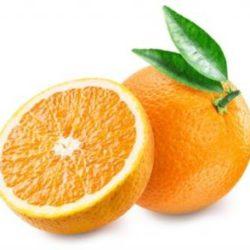 Zoete sinaasappel 'Valencia Late'