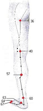acupressuur blaas meridiaan been en voet bij blaasontsteking