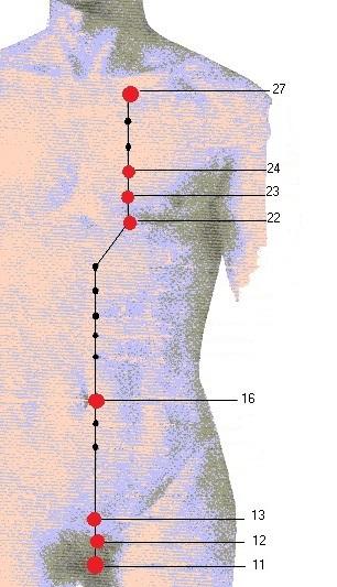 acupressuur en nier meridiaan