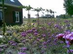 Landelijke tuin in Andel