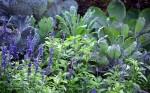 combineer kleur blauw paars groen