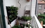 verticaal tuinieren op het balkon met EetbareWand